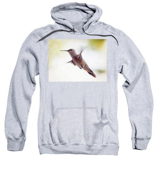 On The Wing Sweatshirt
