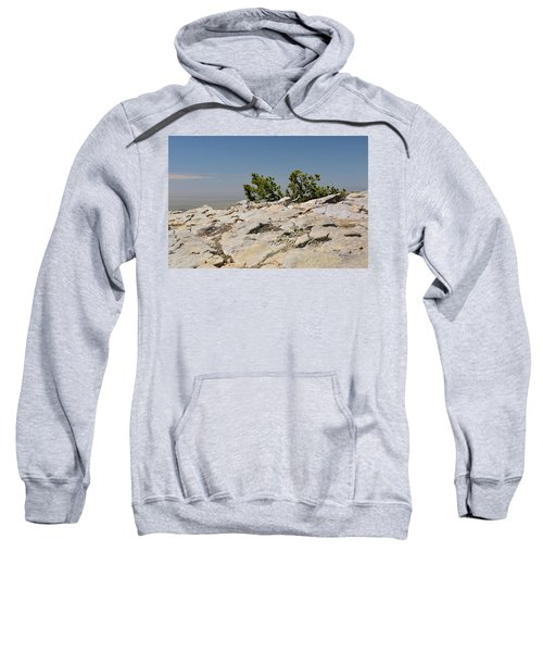 On Top Of Sandia Mountain Sweatshirt