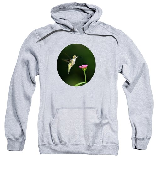 One Hummingbird Sweatshirt by Christina Rollo
