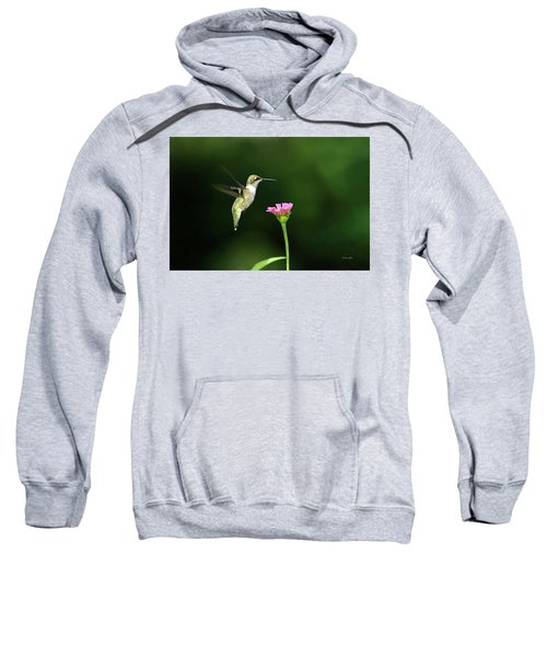 One Hummingbird Sweatshirt