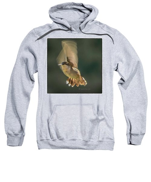 One_wing Sweatshirt