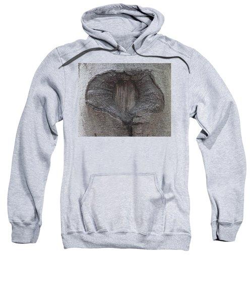 Open Or Closed Sweatshirt