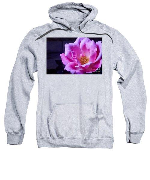 Open Rose Sweatshirt