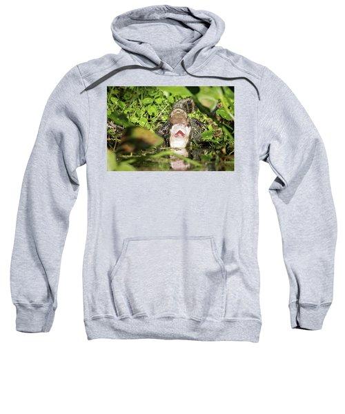 Open Wide Sweatshirt