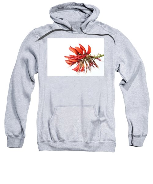 Sweatshirt featuring the photograph Orange Clover IIi by Stephen Mitchell