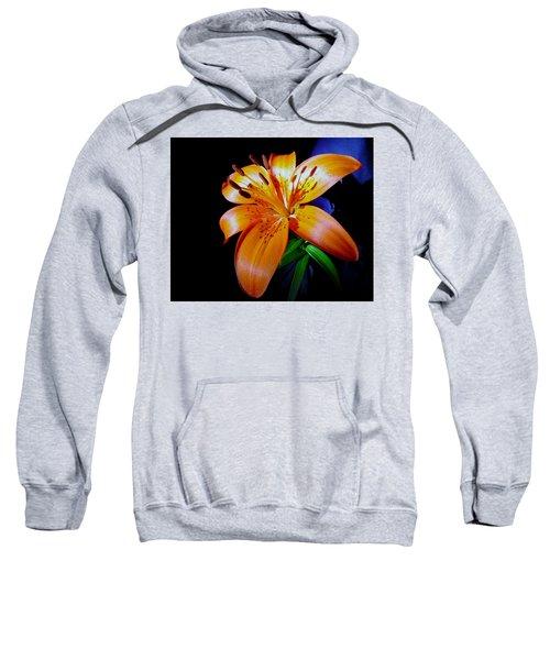 orange Glow Sweatshirt
