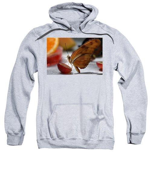 Orange Julia Butterfly Sweatshirt