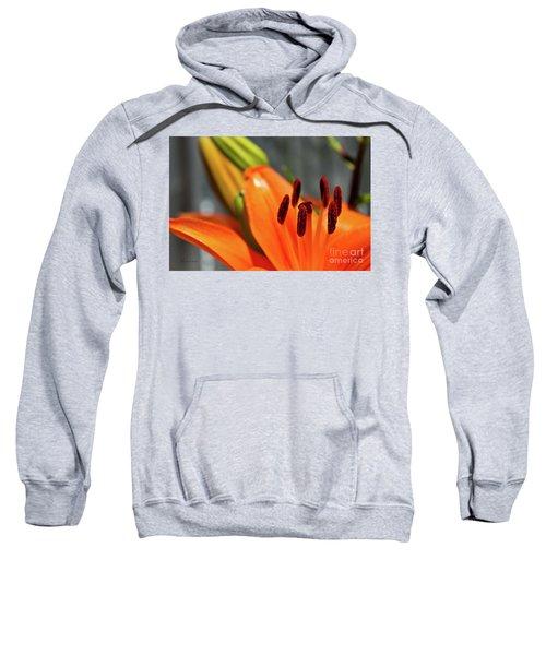 Orange Lily Close Up Sweatshirt