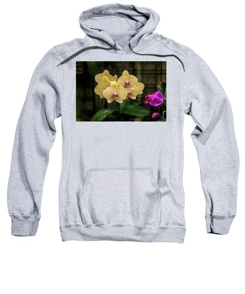 Orange Orchids Sweatshirt