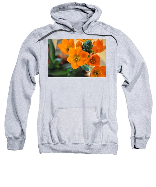 Orange Star Sweatshirt