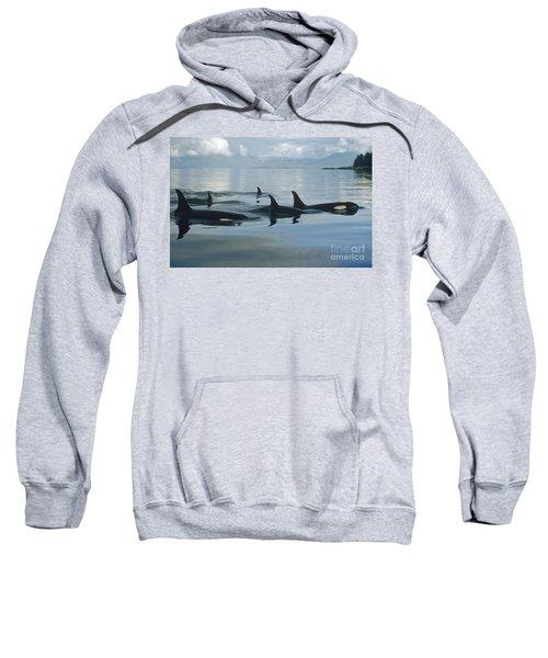 Orca Pod Johnstone Strait Canada Sweatshirt