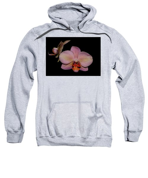 Orchid 2016 3 Sweatshirt