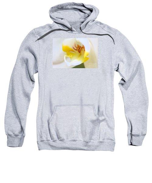 Orchid Macro Sweatshirt