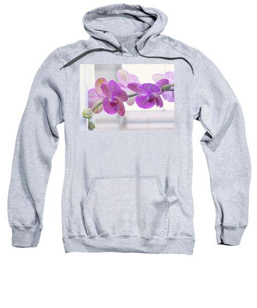 Orchid Spray Sweatshirt