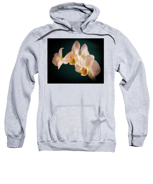 Orchids Sweatshirt