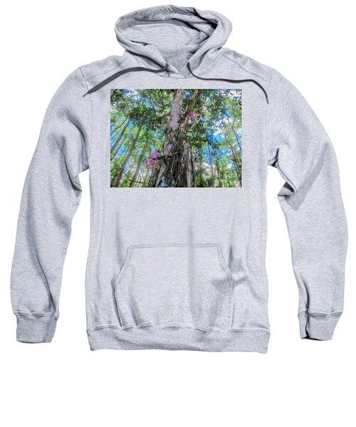 Orchids In A Tree Sweatshirt