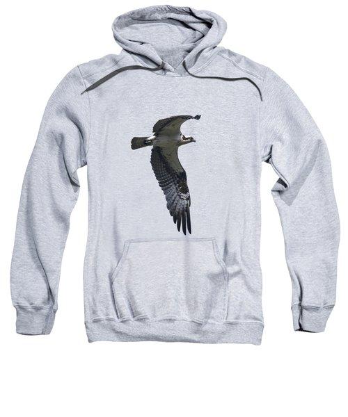 Osprey In Flight 2 Sweatshirt by Priscilla Burgers