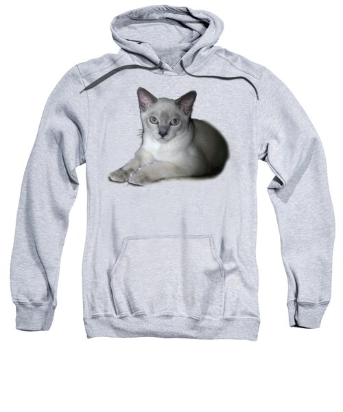 Our Little Angel Sweatshirt