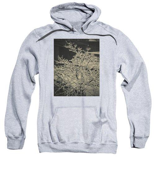 Out Of Window Sweatshirt