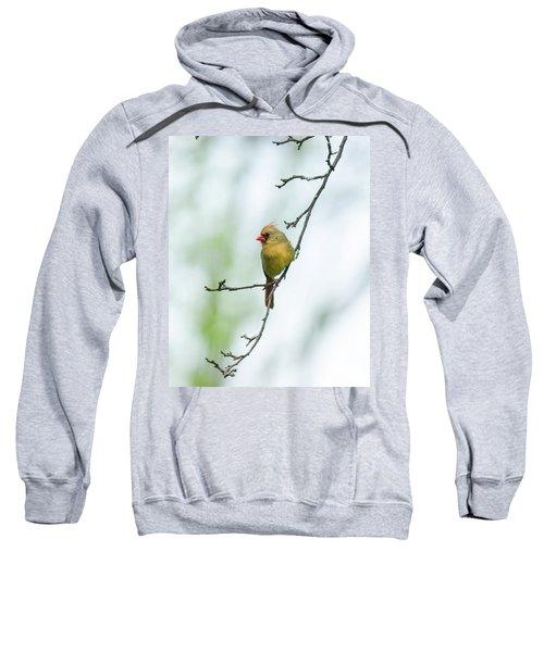 Out On A Limb 2 Sweatshirt