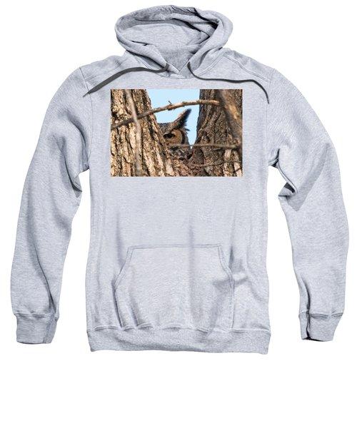 Owl Peek Sweatshirt