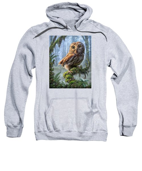 Owl Perch Sweatshirt