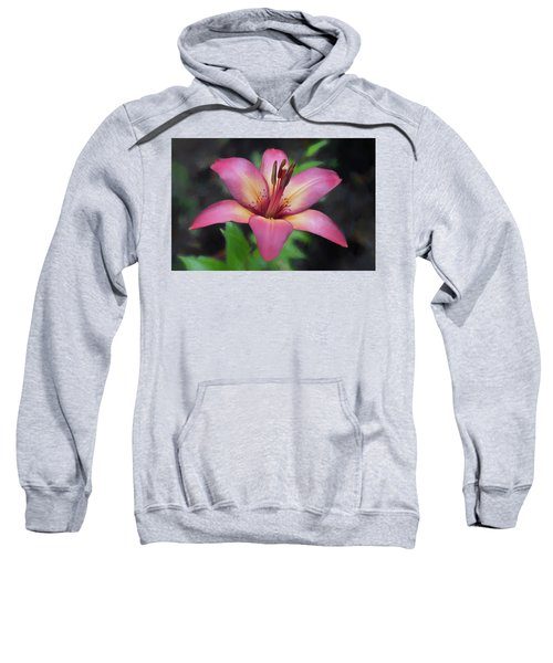Painted Lily Sweatshirt