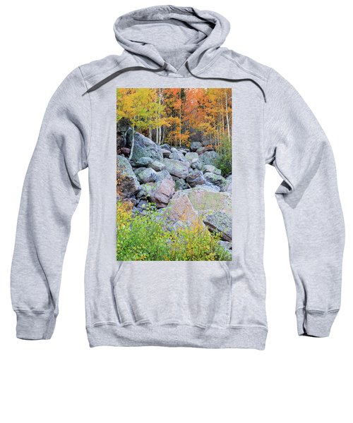 Sweatshirt featuring the photograph Painted Rocks by David Chandler