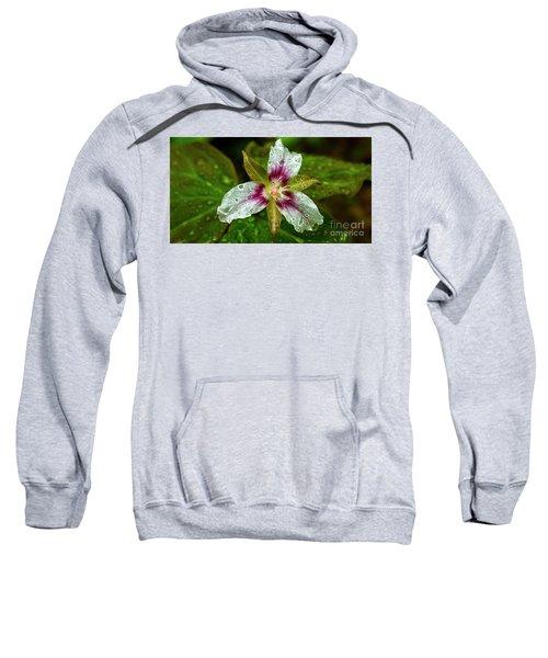 Painted Trillium With Raindrops Sweatshirt