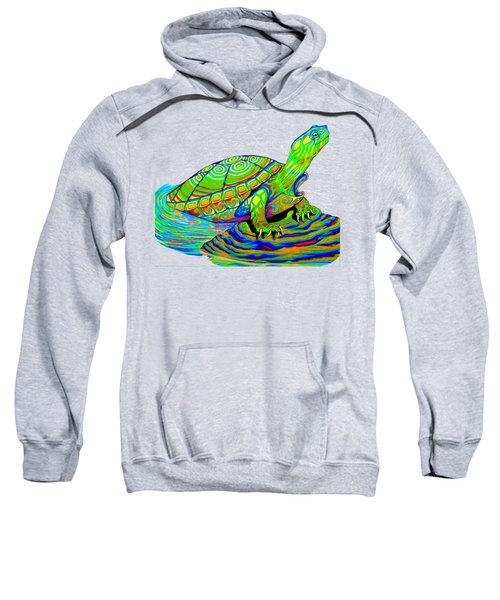 Painted Turtle Sweatshirt by Rebecca Wang