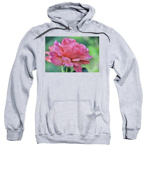 Pale Blush Sweatshirt