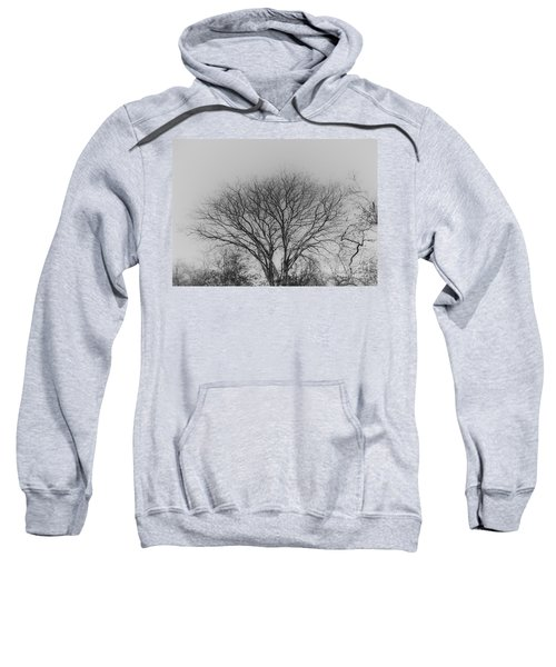 Pale Shades Sweatshirt