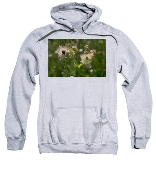 Pale Umbrella Wort Sweatshirt