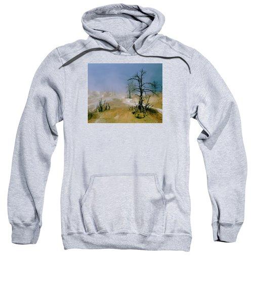 Palette Springs Sweatshirt