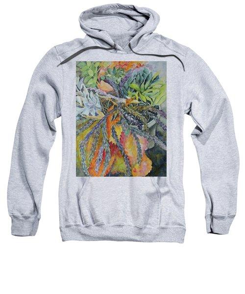 Palm Springs Cacti Garden Sweatshirt
