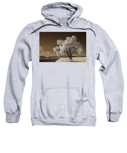 Palouse Sweatshirt