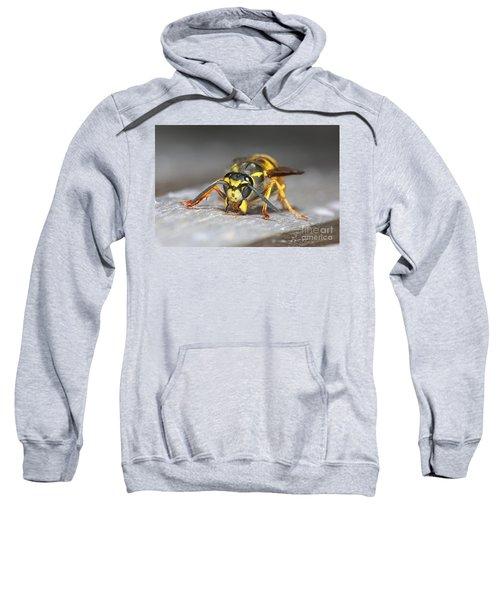 Paper Maker Sweatshirt
