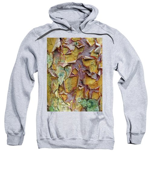Paperbark Maple Tree Sweatshirt
