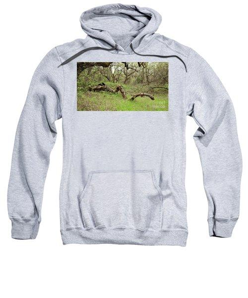 Park Serpent Sweatshirt