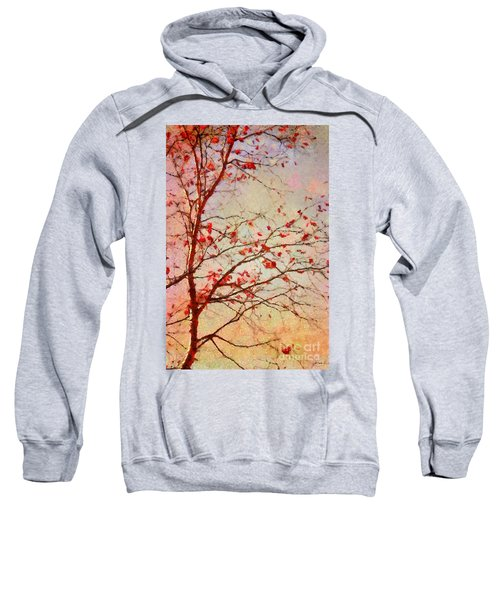 Parsi-parla - D04c03t01 Sweatshirt