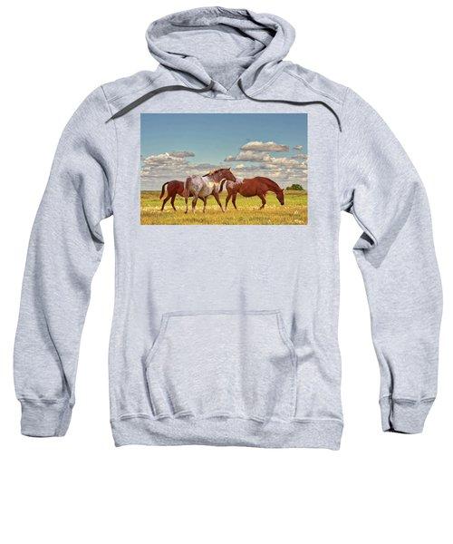 Party Of Three Sweatshirt