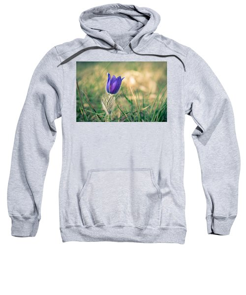 Pasque Flower Sweatshirt