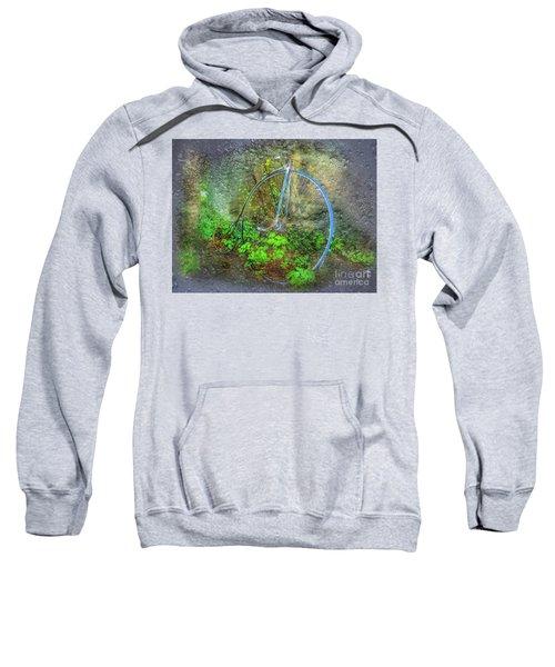 Past Times Sweatshirt