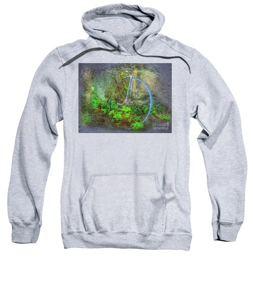 Past Times Sweatshirt