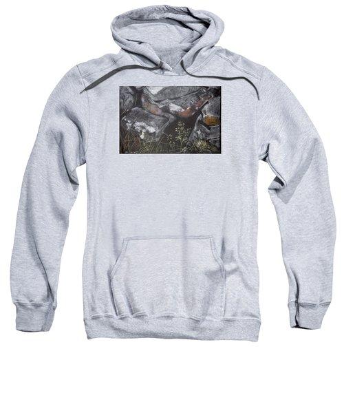 Pastel Stones And Plants On Black Sweatshirt