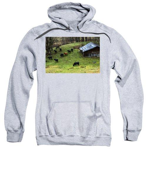 Pasture Field And Cattle Sweatshirt