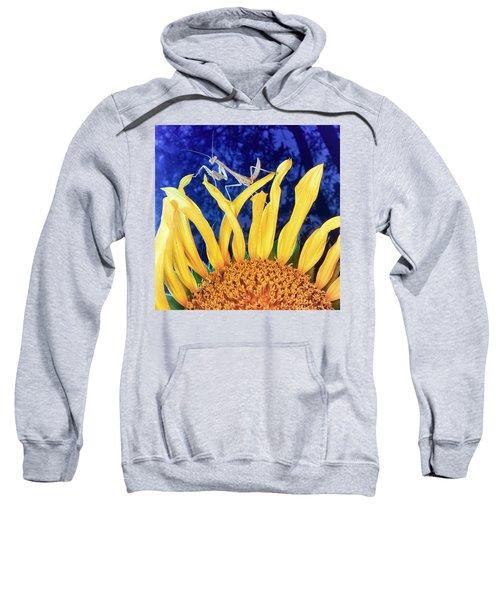 Peace Brings Death Sweatshirt