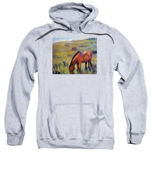 Peace On The Mountain Sweatshirt