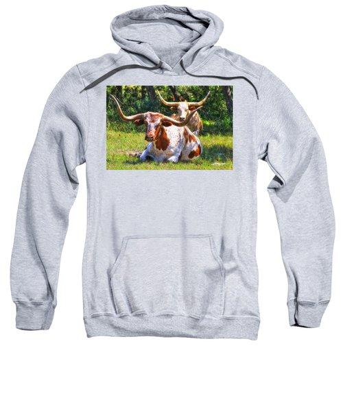 Peaceful Weapons Sweatshirt