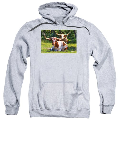 Peaceful Weapons Sweatshirt